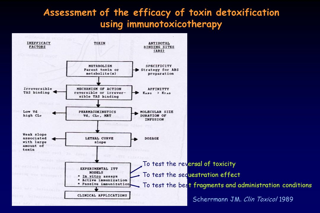 Assessment of the efficacy of toxin detoxification using immunotoxicotherapy