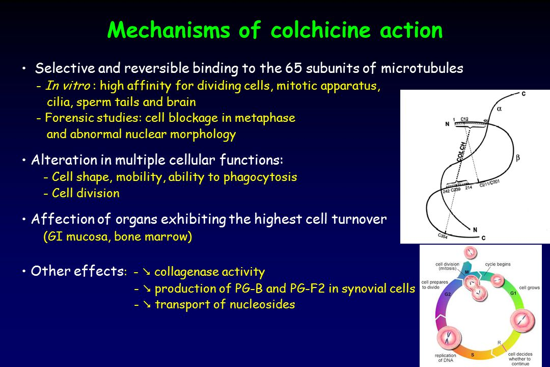 Mechanisms of colchicine action
