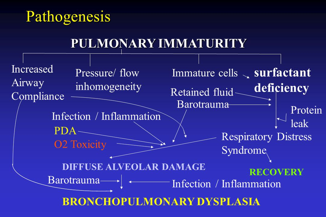 Pathogenesis PULMONARY IMMATURITY surfactant deficiency Increased