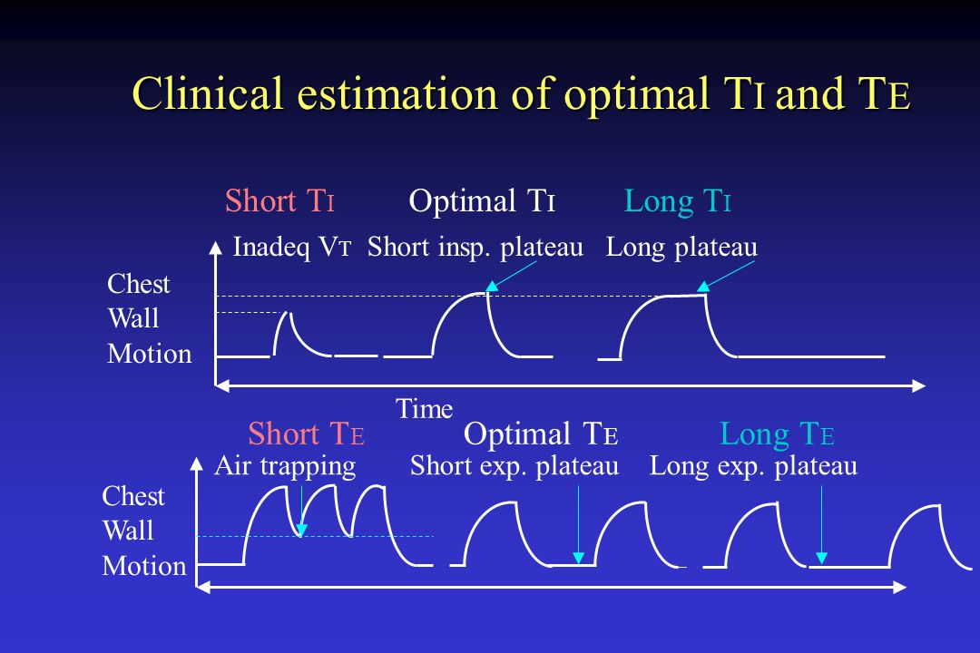 Clinical estimation of optimal TI and TE