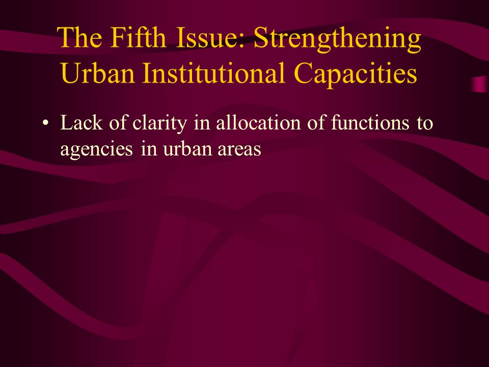 The Fifth Issue: Strengthening Urban Institutional Capacities