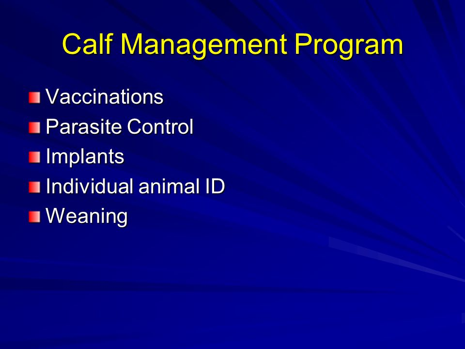 Calf Management Program