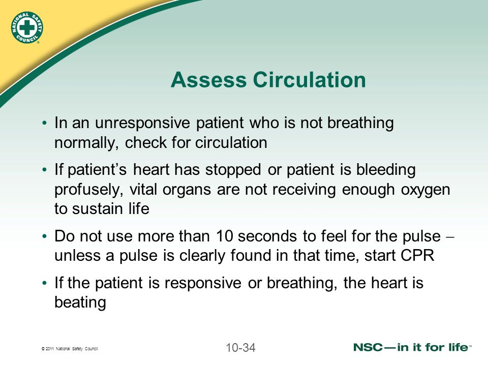 Assess Circulation In an unresponsive patient who is not breathing normally, check for circulation.