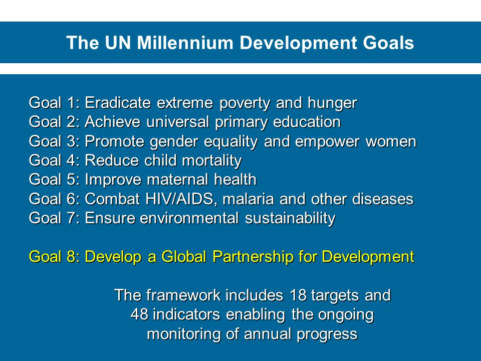 The UN Millennium Development Goals