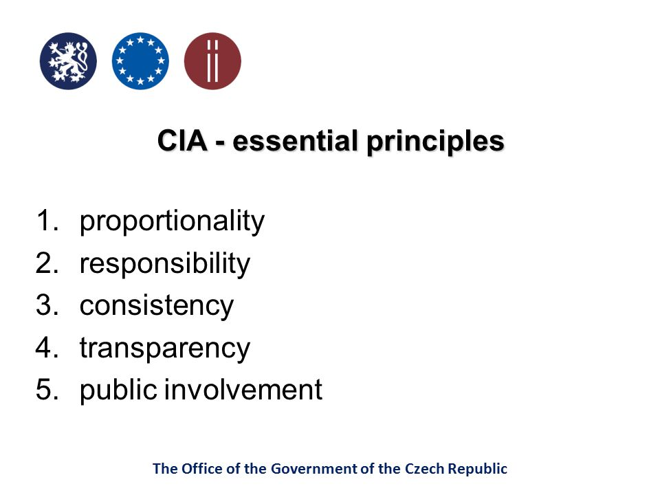 CIA - essential principles