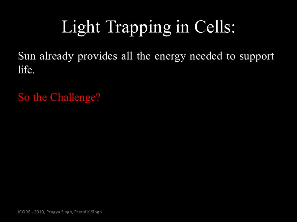 Light Trapping in Cells: