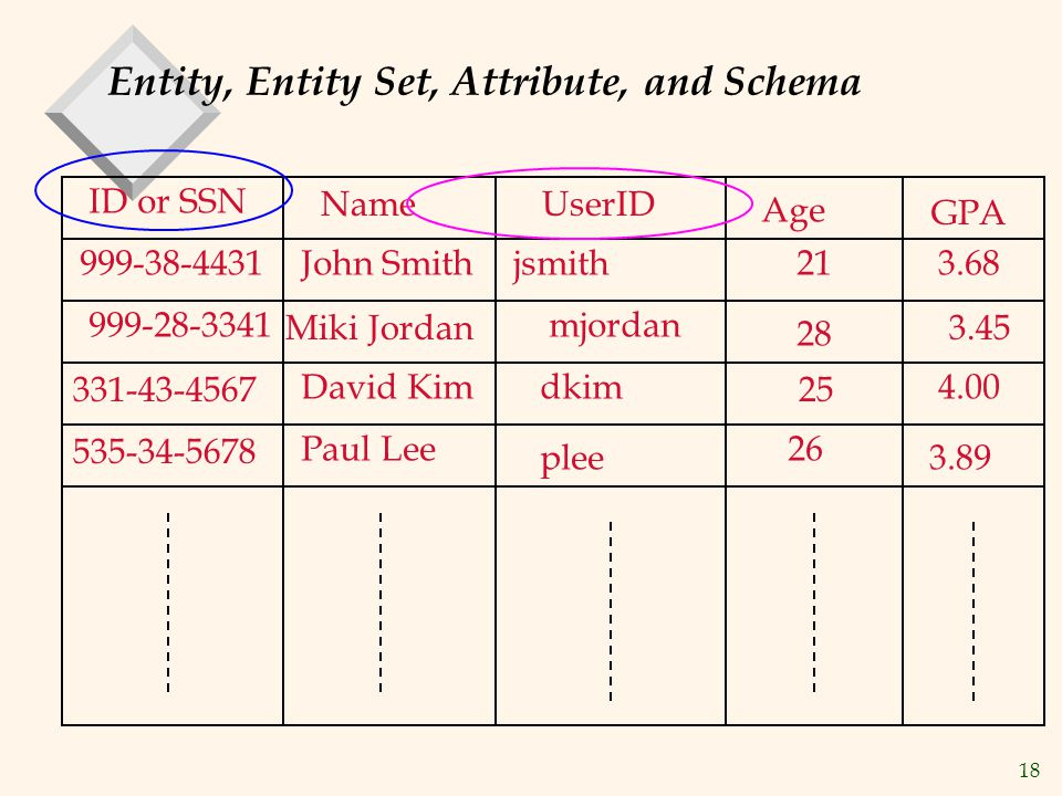 Entity, Entity Set, Attribute, and Schema