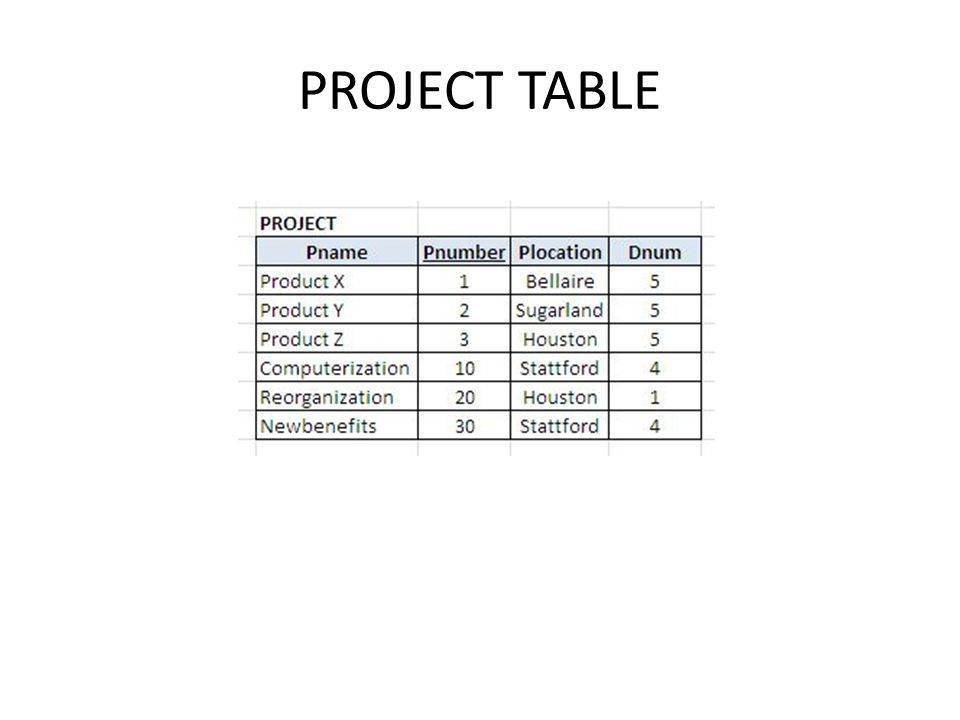 PROJECT TABLE