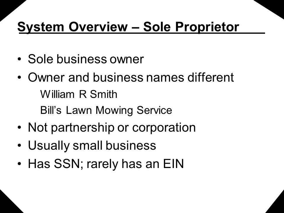 System Overview – Sole Proprietor