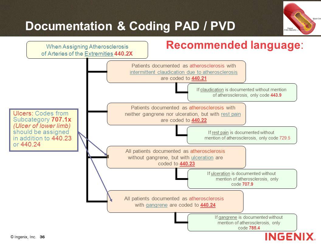 Documentation & Coding PAD / PVD