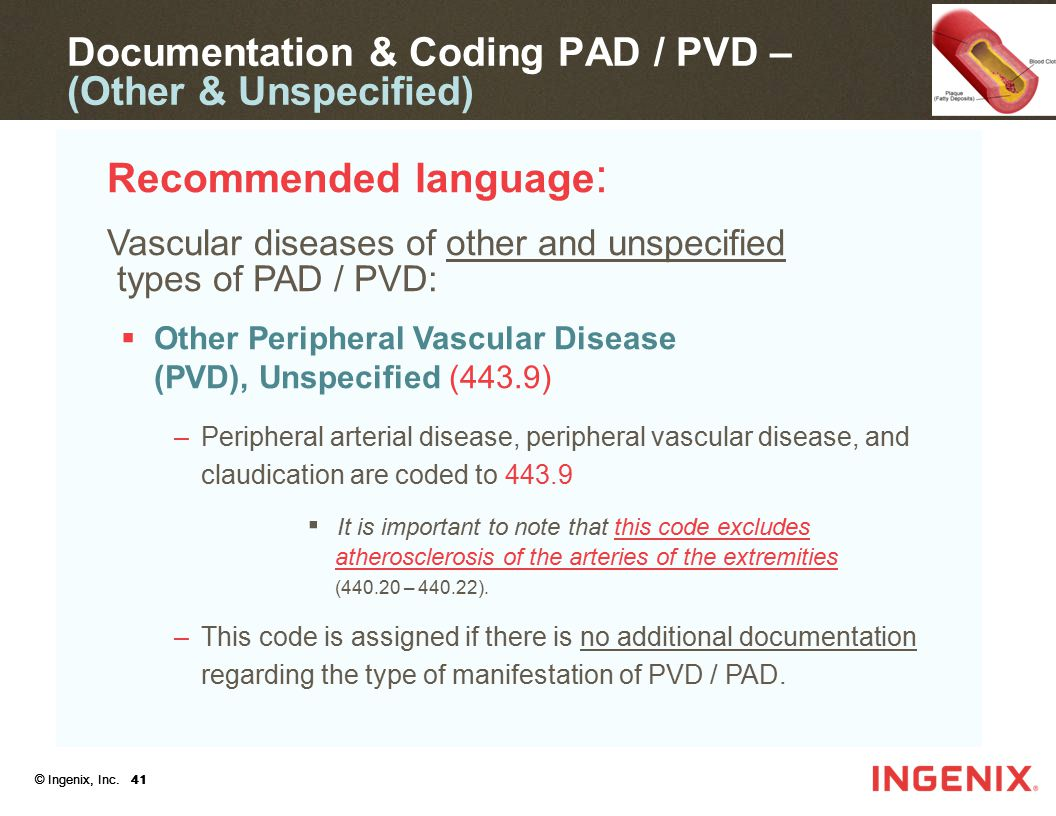 Documentation & Coding PAD / PVD – (Other & Unspecified)