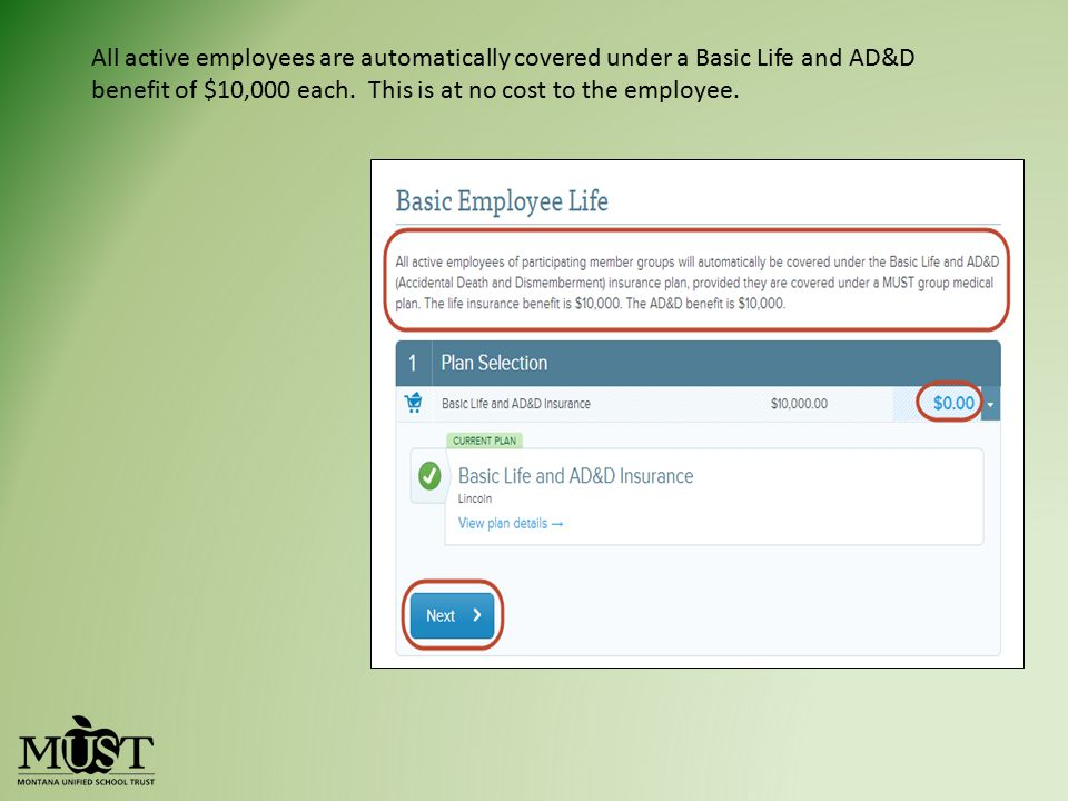 All active employees are automatically covered under a Basic Life and AD&D benefit of $10,000 each.