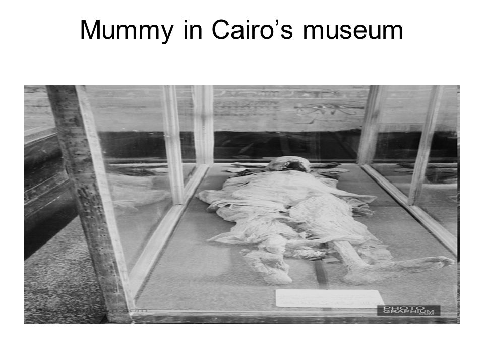 Mummy in Cairo's museum