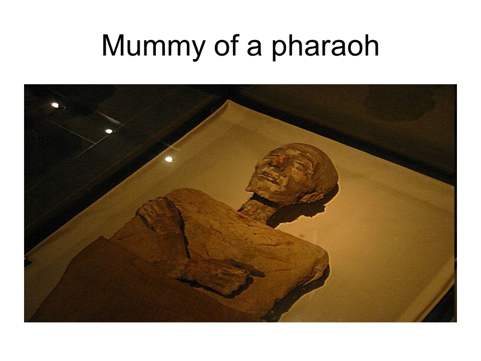 Mummy of a pharaoh