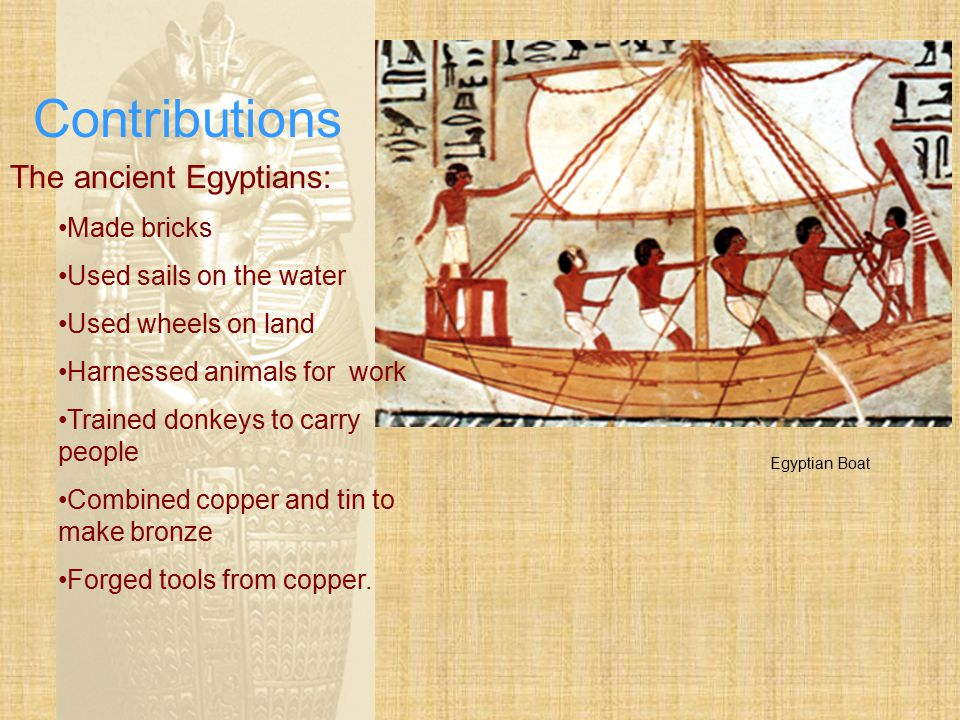 Contributions The ancient Egyptians: Made bricks