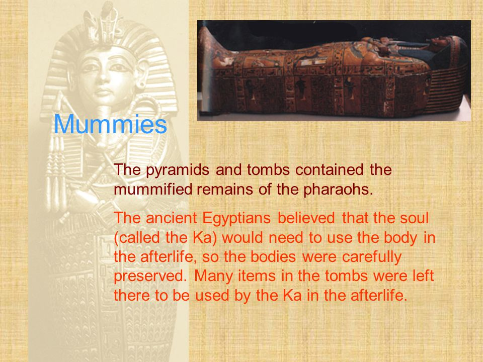 Mummies The pyramids and tombs contained the mummified remains of the pharaohs.