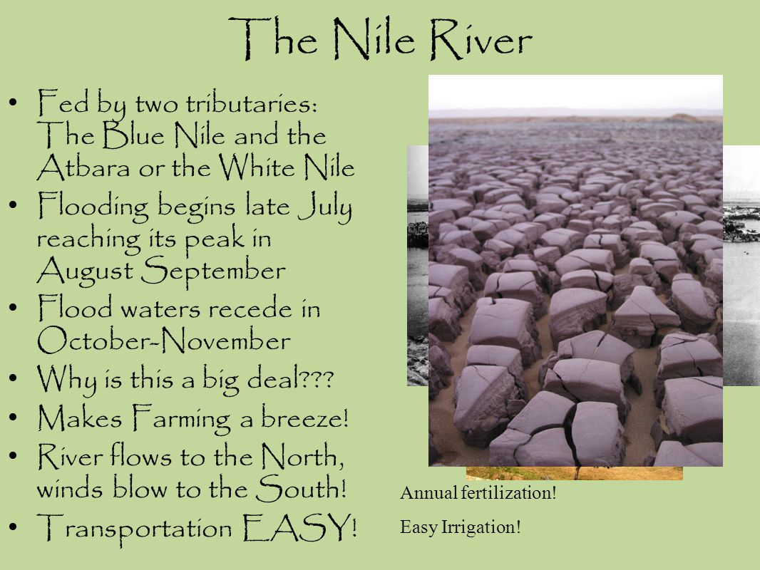 The Nile River Fed by two tributaries: The Blue Nile and the Atbara or the White Nile.