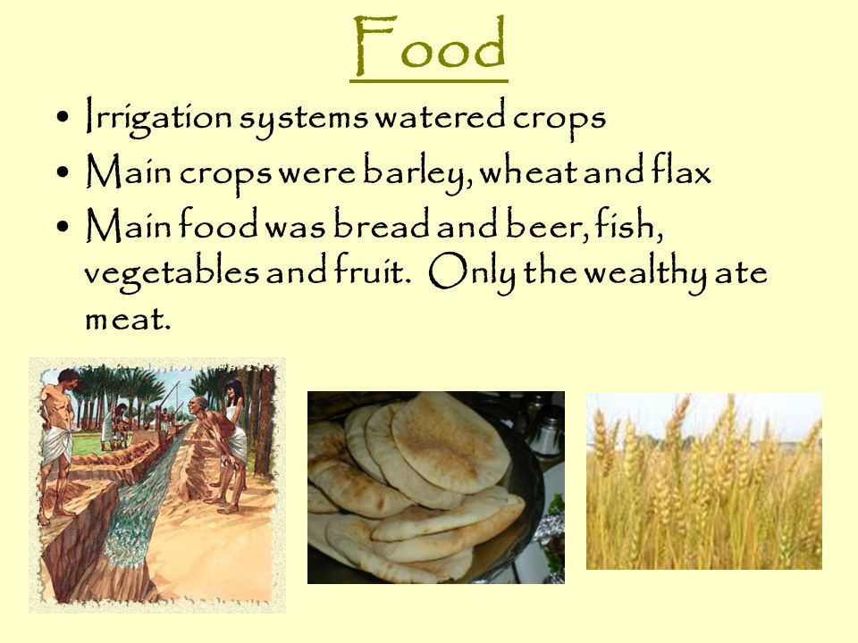 Food Irrigation systems watered crops