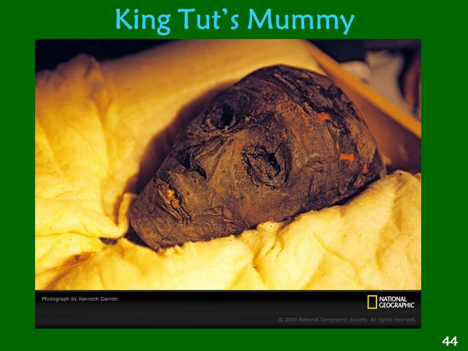King Tut's Mummy 44