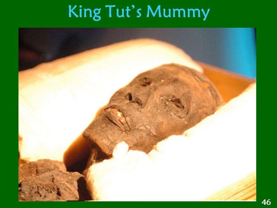 King Tut's Mummy 46