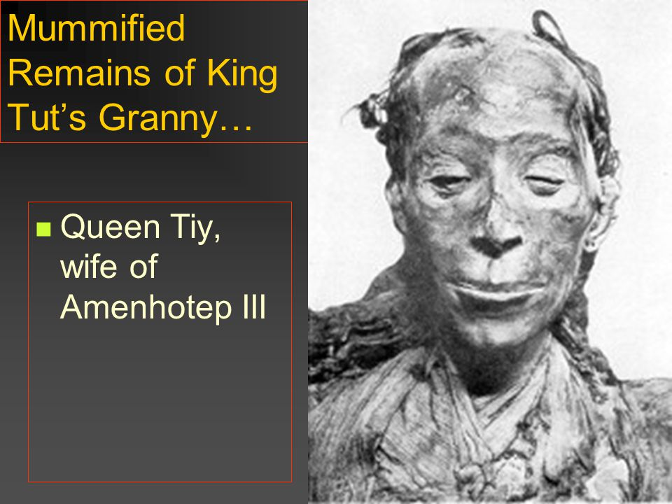 Mummified Remains of King Tut's Granny…