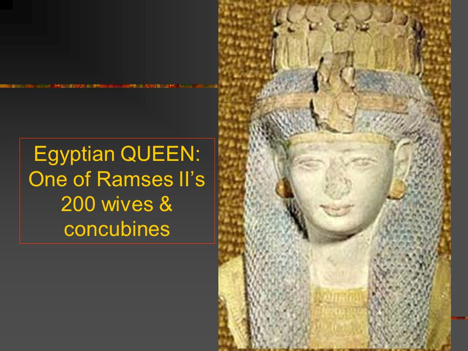 Egyptian QUEEN: One of Ramses II's 200 wives & concubines