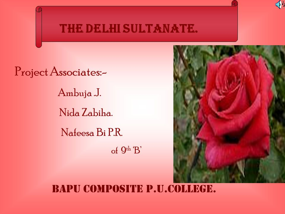 THE DELHI SULTANATE. Project Associates:- Nafeesa Bi P.R. Ambuja .J.