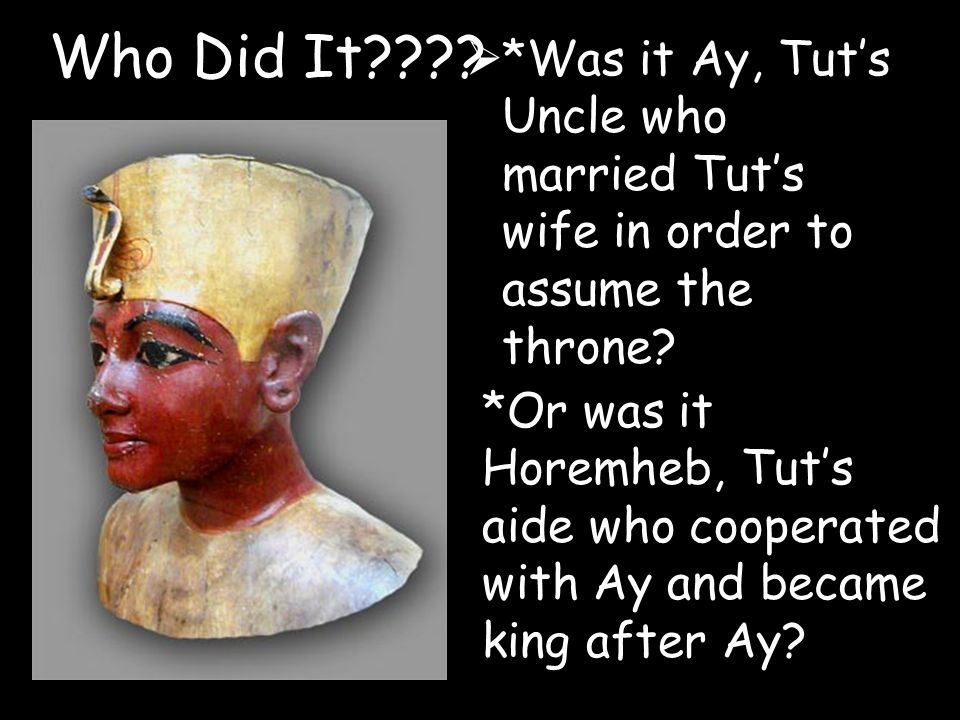 Who Did It *Was it Ay, Tut's Uncle who married Tut's wife in order to assume the throne