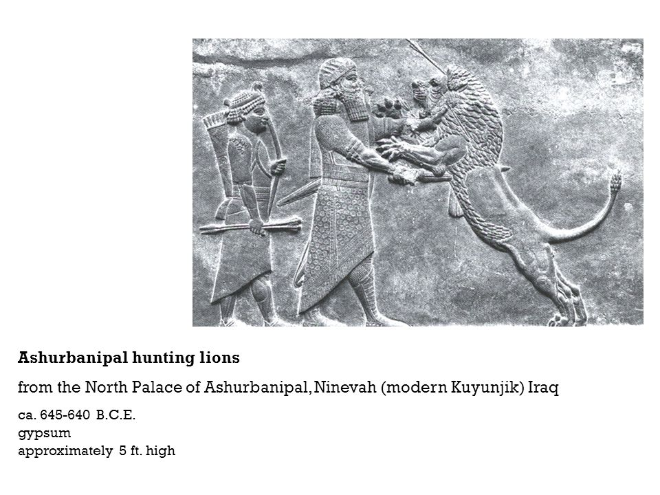 Ashurbanipal hunting lions