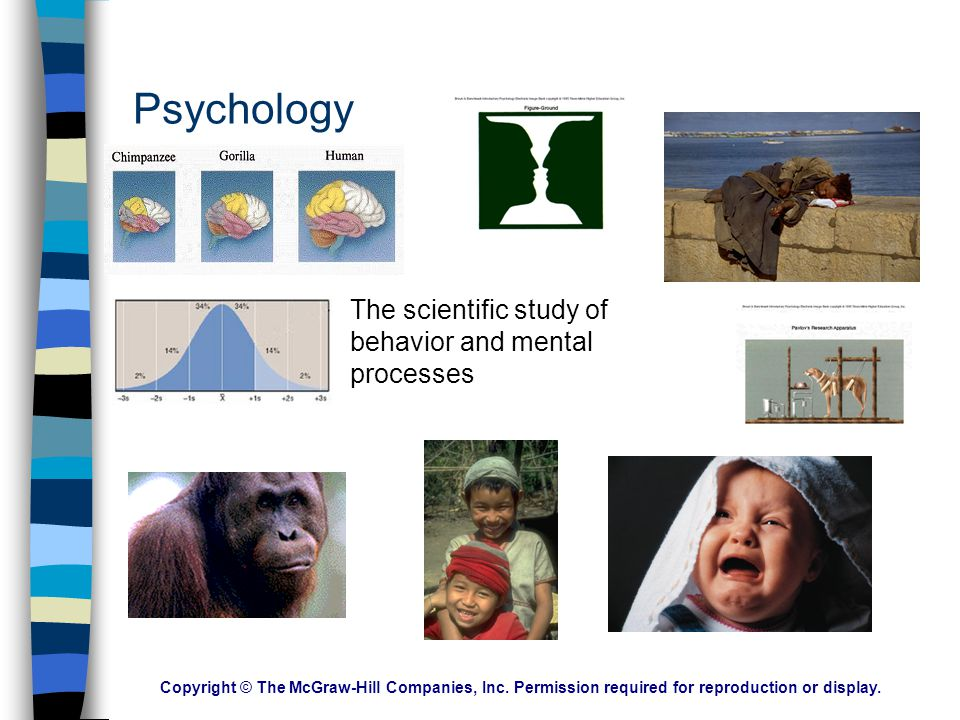 Psychology The scientific study of behavior and mental processes