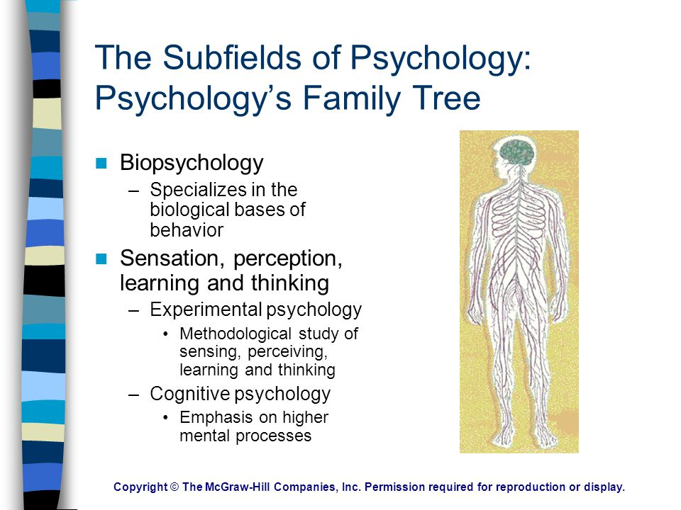 The Subfields of Psychology: Psychology's Family Tree