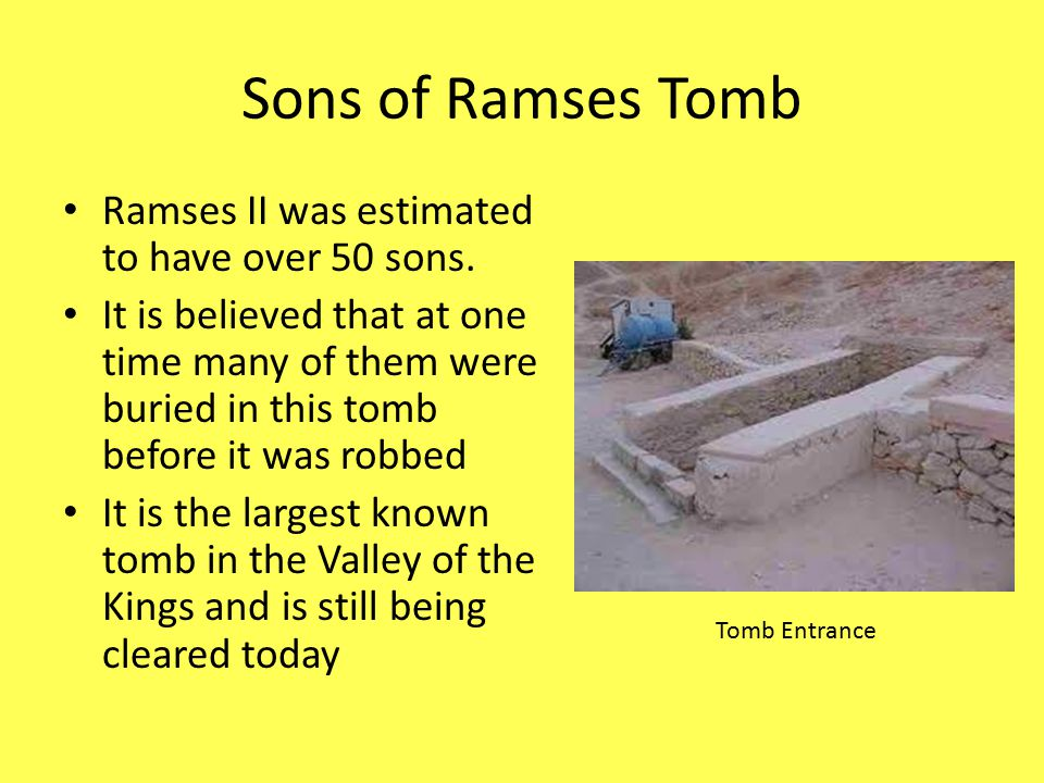 Sons of Ramses Tomb Ramses II was estimated to have over 50 sons.