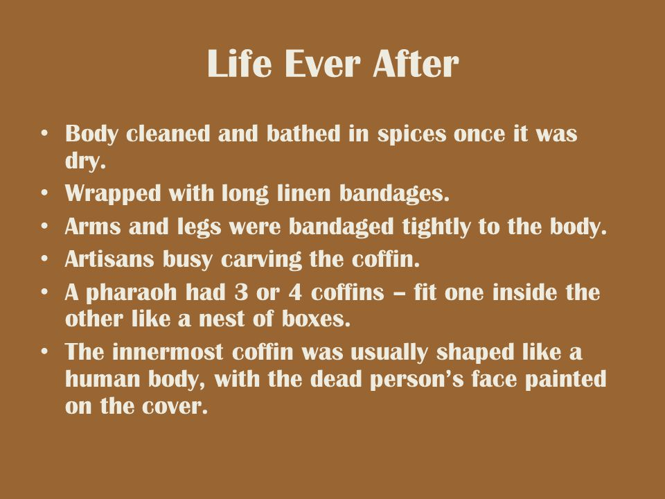 Life Ever After Body cleaned and bathed in spices once it was dry.