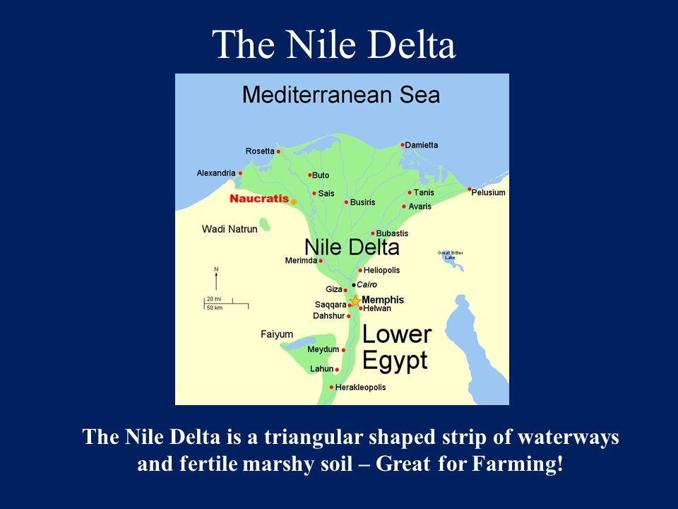 The Nile Delta The Nile Delta is a triangular shaped strip of waterways.