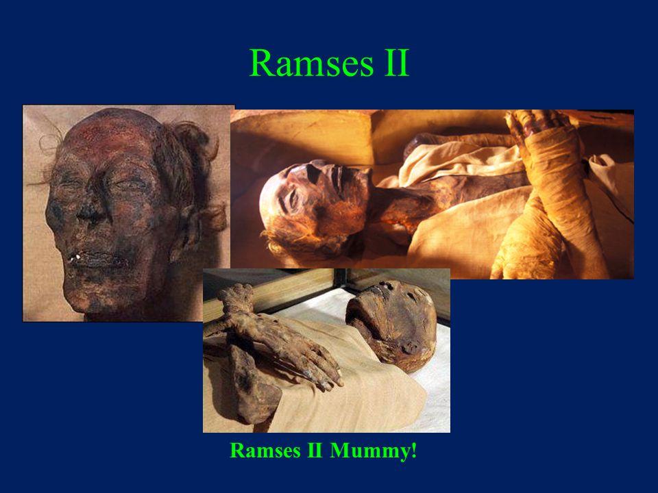 Ramses II Ramses II Mummy!