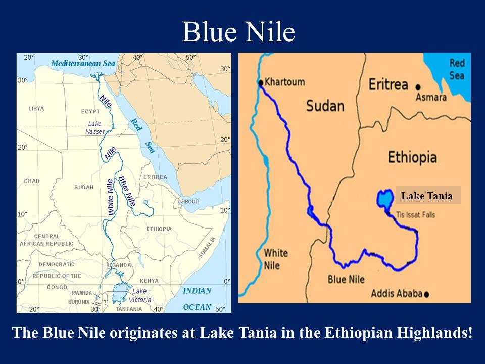The Blue Nile originates at Lake Tania in the Ethiopian Highlands!