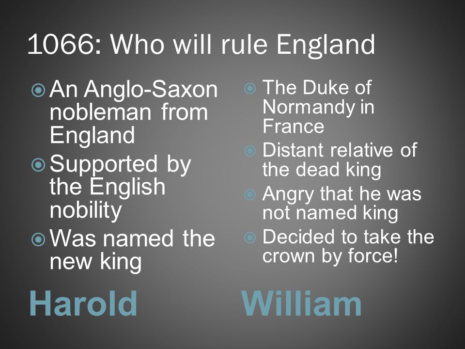Harold William 1066: Who will rule England
