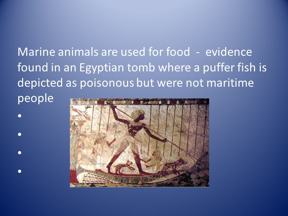 Marine animals are used for food - evidence found in an Egyptian tomb where a puffer fish is depicted as poisonous but were not maritime people