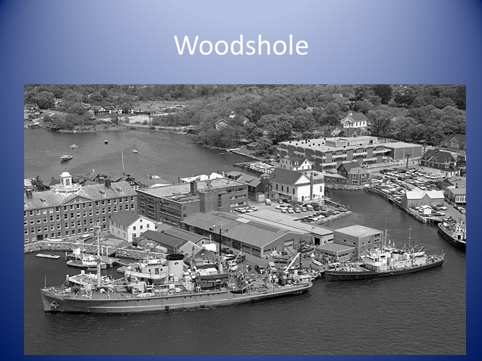 Woodshole
