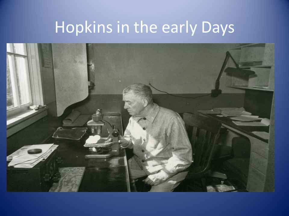 Hopkins in the early Days