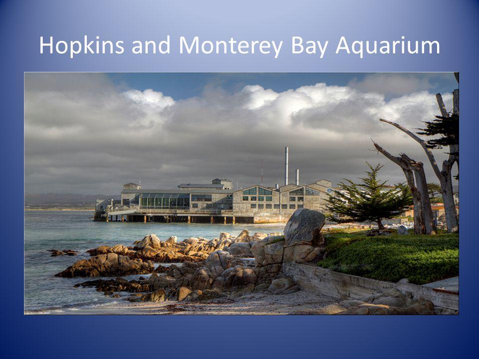 Hopkins and Monterey Bay Aquarium