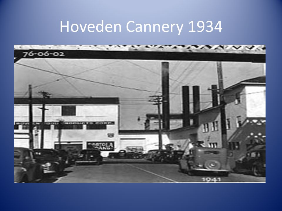 Hoveden Cannery 1934