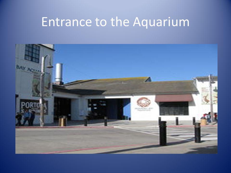 Entrance to the Aquarium