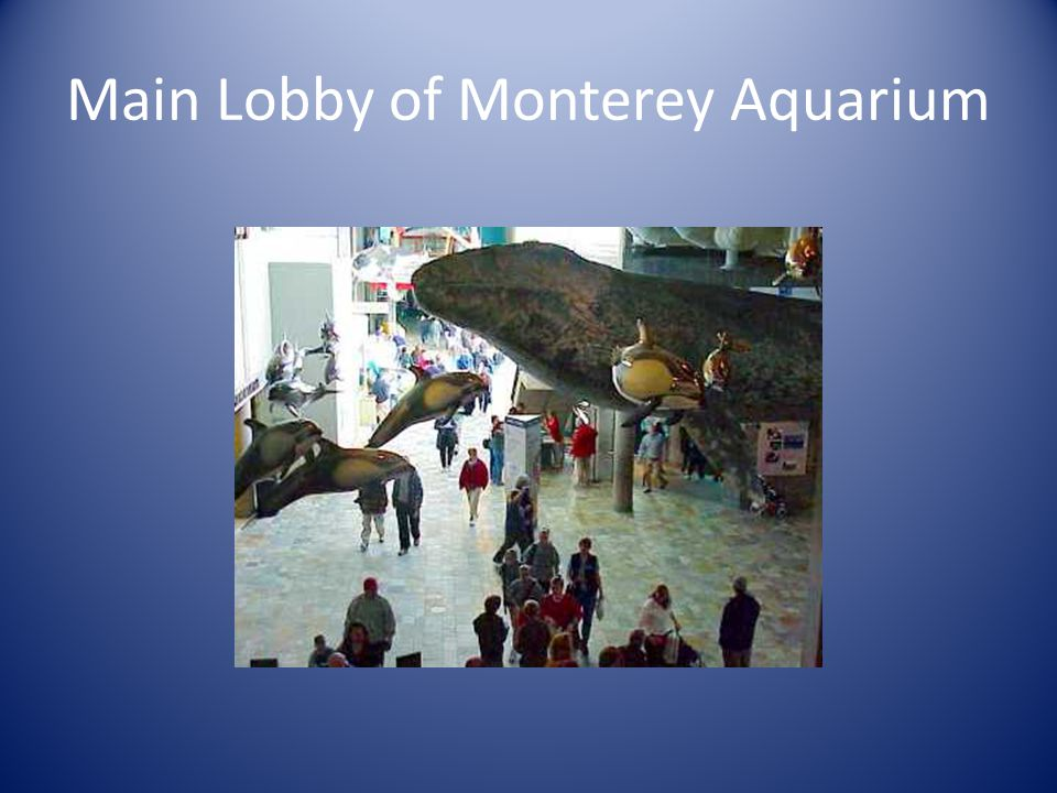 Main Lobby of Monterey Aquarium