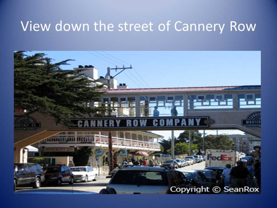View down the street of Cannery Row