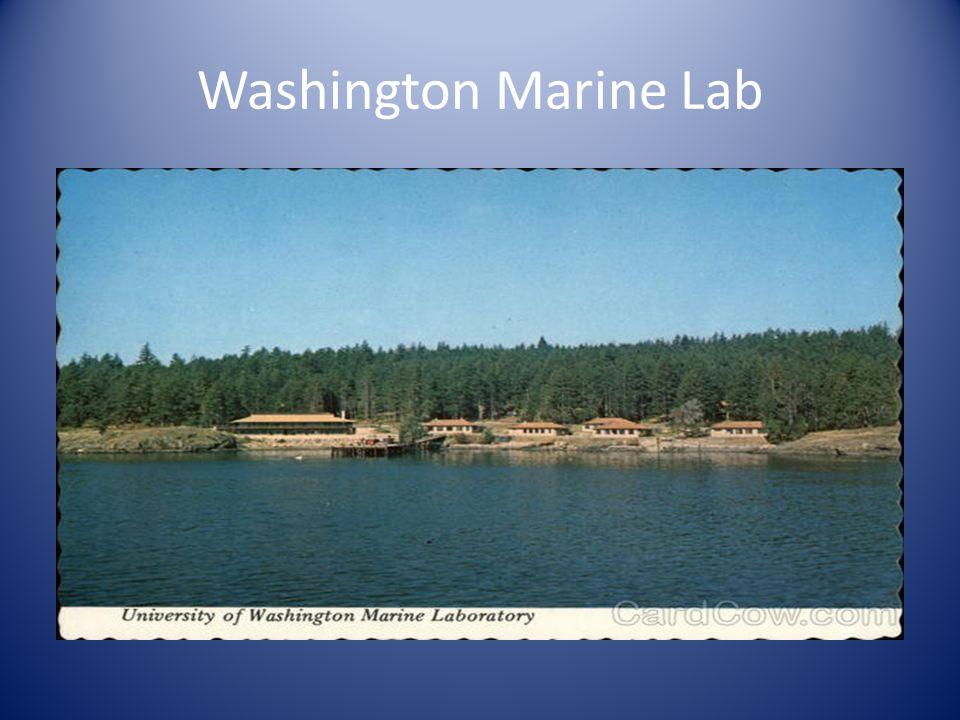 Washington Marine Lab