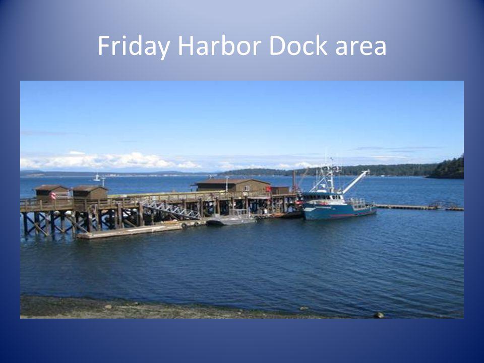 Friday Harbor Dock area