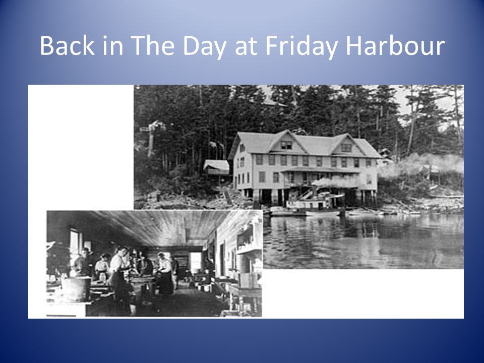 Back in The Day at Friday Harbour