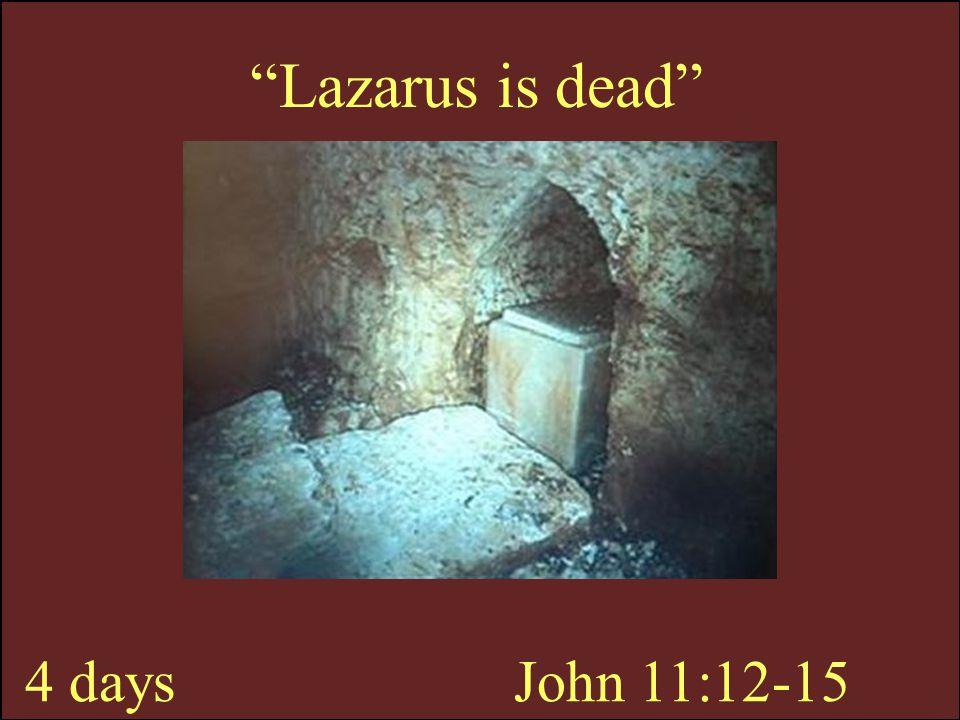 Lazarus is dead 4 days John 11:12-15