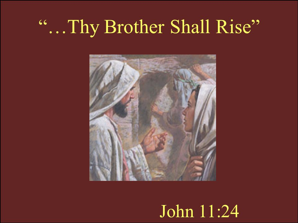 …Thy Brother Shall Rise